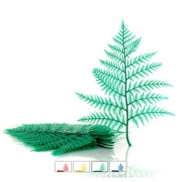 DISPLAY FERN A/COL (12) - Click for more info