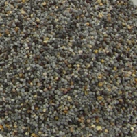 POPPY SEED 15KG - Click for more info