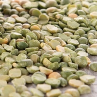 PUMPKIN SEED - PEPITAS 25KG (DNS) - Click for more info