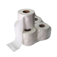 TOILET PAPER 2PLY (48/PACK) - Click for more info