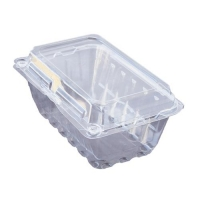 PET FRUIT CONTAINER (500) T102 - Click for more info